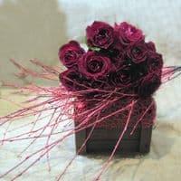 Red roses in a wooden pot / Κόκκινα τριαντάφυλλα μέσα σε ξύλινο καφάσι